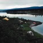Campsites0001